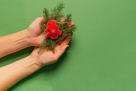 Christmas tree toy made from natural materials fir branches in female hands, hands green background. Christmas Zero West