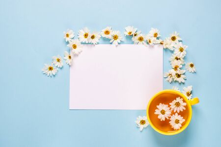 A cup of flowered chamomile tea and a blank empty sheet of white paper on a blue background with spread out flowers.