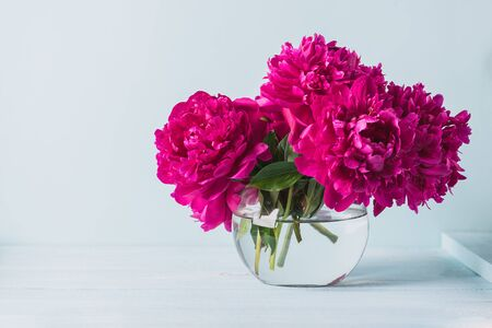 Beautiful burgundy pink peonies stand in a round vase on the table. Light background selective focus. Horizontal frame copy space Standard-Bild