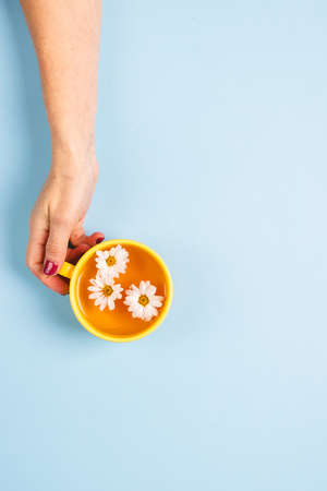 A mug of floral herbal chamomile tea in a womans hand on a blue background with flowers. Floral summer background.