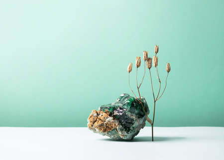 Abstract composition podium glass o with the texture of natural mineral stone and a sprig of dry plant flower on pastel background. Template for exhibition advertisement of cosmetics items copy space Imagens