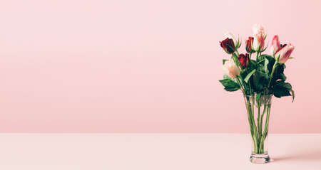 Beautiful fresh roses in a glass vase are arranged on a table against a pastel pink background. Selective focus copy space