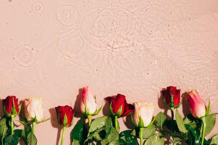 Natural floral mockup. Fresh rose buds on water wave splash background. Top view