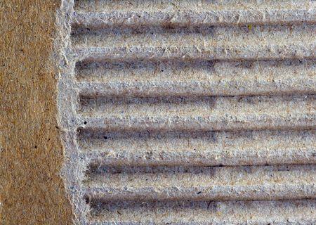 Close-up of a torn cardboard sheet photo