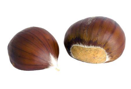 castanea sativa: Isolated sweet chestnut (Castanea sativa) fruits on white background