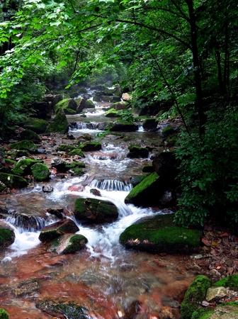 A flowing brook