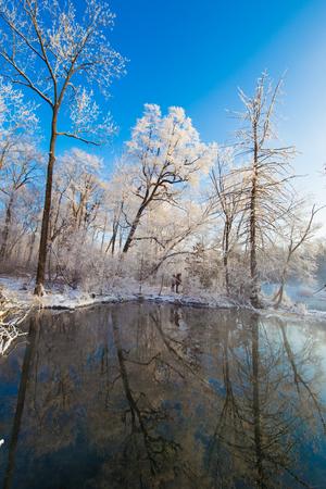 bomen en meer bij bos onder zonsondergang in de sneeuw
