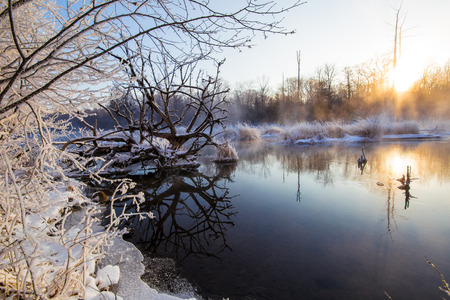 trees and lake at forest under sunset in snow