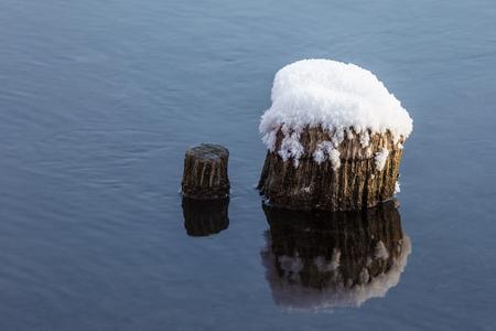 Boomstronk in het water met sneeuw die bovenop wordt behandeld Stockfoto