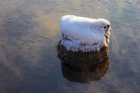View of a tree stump covered in snow in the water