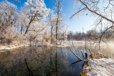 Landschapsmening van bomen tijdens de winter onder de blauwe hemel