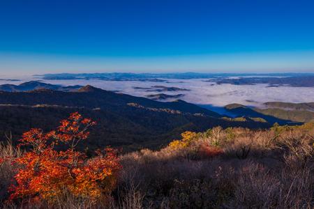 Colorful autumn scenery Stockfoto