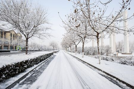 Urban parks with snow in winter are covered with white snowflakes.