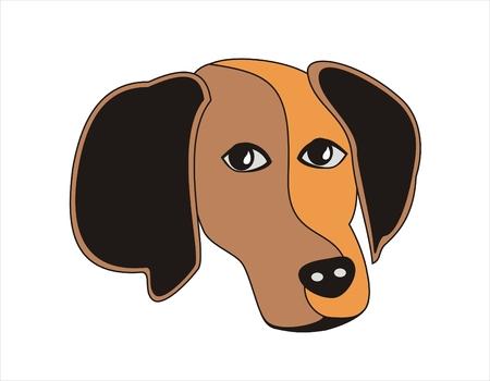 geteilt: Abstrakt Hund Gesicht, die in zwei farbigen Teile unterteilt werden.