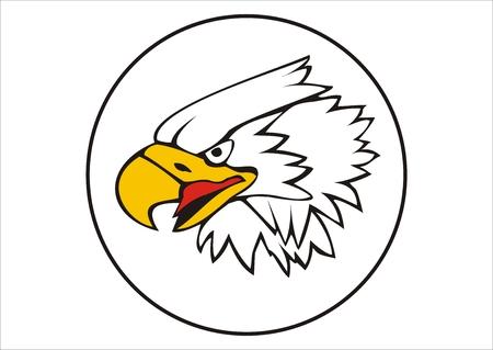 Vectorized head of an eagle in a circle. Vector
