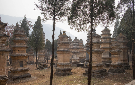 Dengfeng, HenanChina- JANUARY 20, 2019: Talin Pagodas, It's memorial of the high priest of Shaolin temple. Located in the part of Shaolin temple, Songshan Mountain, Dengfeng city Henan province, China.