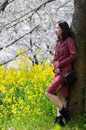 Wuhan East Lake Sakura Garden. Unspecific woman looking at the cherry blossom in the east lake. Its one of the destination for travel. Фото со стока - 122674076