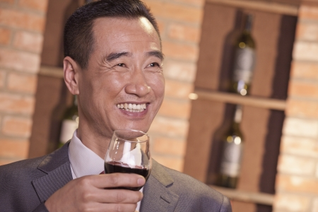 Smiling Businessman Holding Wine Glass  Stok Fotoğraf