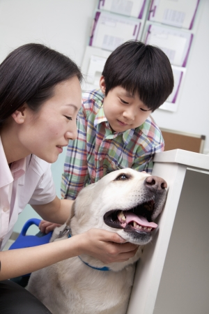 pampered pets: Boy with pet dog in veterinarians office