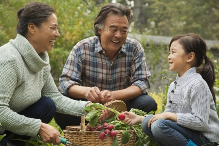family gardening: Grandparents and granddaughter in garden Stock Photo