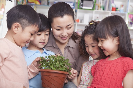 green plants: Teacher Showing a Plant to a Group of Students Stock Photo
