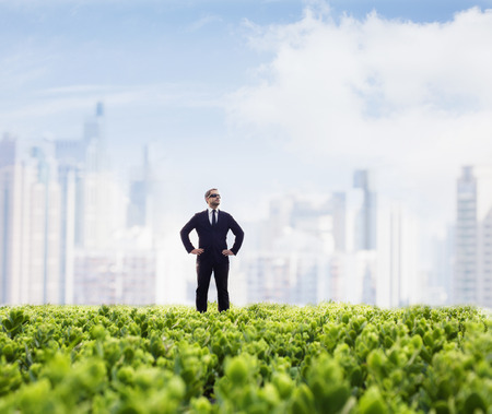 green office: Businessman in sunglasses  and hands on hips standing in a green field with city skyline in the background