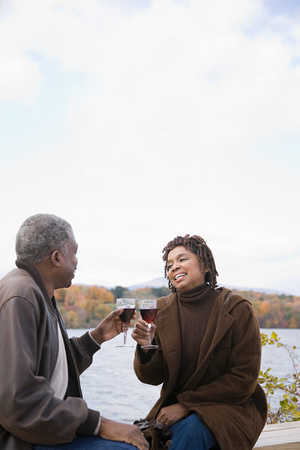 afro caribbean ethnicity: A couple toasting Stock Photo