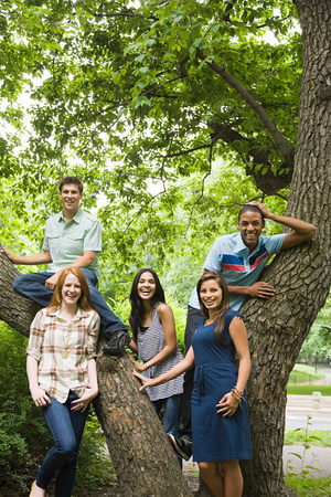 20 to 25 year olds: Five young friends around a tree