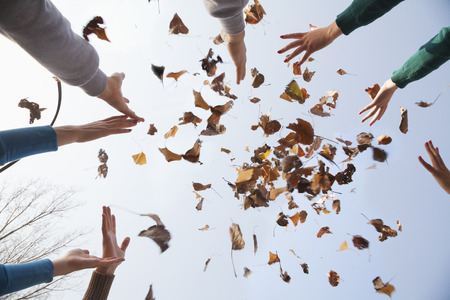 stretched out: Group of young people throwing leaves  Stock Photo