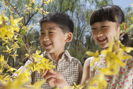 some under 18: Smiling young boy and girl looking at the yellow blossoms on the tree in the park in springtime Stock Photo