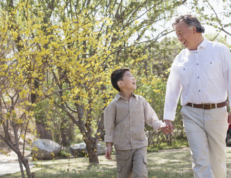 walk in: Smiling grandfather and grandson holding hands and going for a walk in the park in springtime