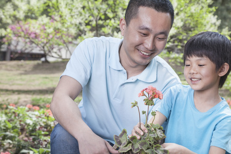 some under 18: Father and son planting flowers.