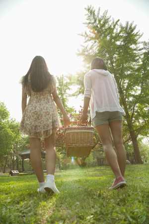 Two friends walking into a park to have a picnic and carrying a picnic basket on a spring day, rear view