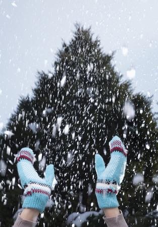 雪の日生まれの腕