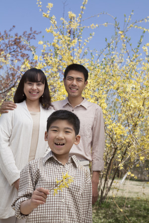 some under 18: Portrait of smiling family and little boy holding a yellow flower blossom in the park in springtime