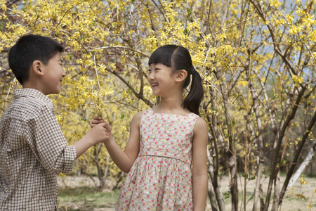 some under 18: Young and smiling brother and sister showing each other the yellow blossoms in the park in springtime Stock Photo