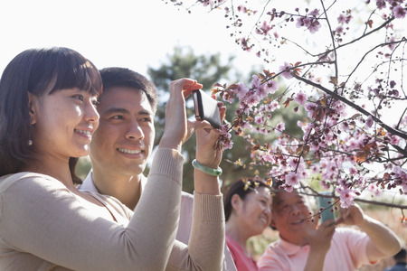 Smiling couple taking a photograph of a branch with cherry blossoms, outside in a park in the springtime