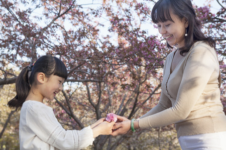 some under 18: Smiling mother giving her daughter a cherry blossom outside in the park in the springtime, Beijing Stock Photo