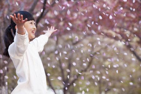 cerezos en flor: Chica joven feliz que lanza p�talos de flor de cerezo en el aire exterior en un parque en primavera