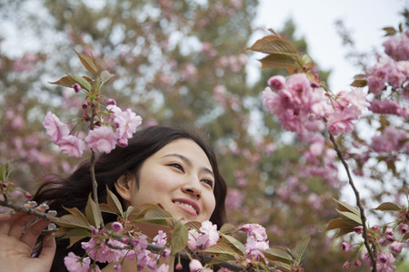 above 18: Portrait of smiling and serene young woman by beautiful pink blossoms, in the park in springtime Stock Photo