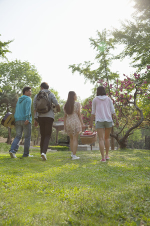 above 18: Four friends walking into a park to have a picnic on a spring day, carrying a picnic basket and a soccer ball
