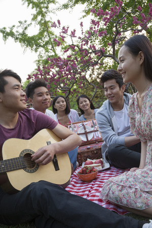 above 18: Six friends having a picnic and hanging out in the park, playing guitar and talking Stock Photo