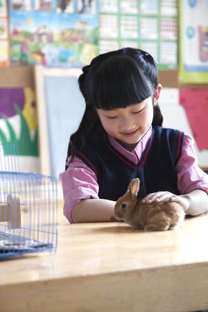 all under 18: Schoolgirl petting pet rabbit in classroom Stock Photo
