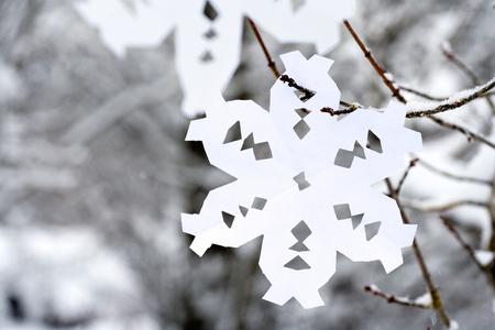 木にぶら下がっているペーパー スノーフレーク 写真素材