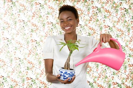 Woman watering houseplant Stock Photo