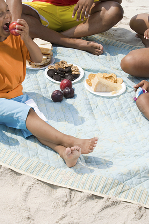 plum island: Family having a picnic