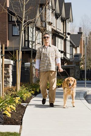 blind man: Blind man with a golden retriever