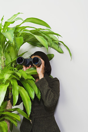 visions of america: Businesswoman hiding behind plant with binoculars