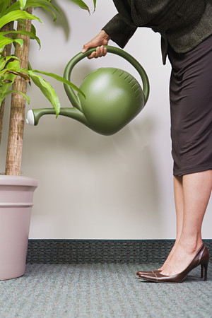 watering plant: Businesswoman watering plant Stock Photo