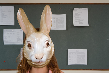 animal woman: Office worker wearing a mask